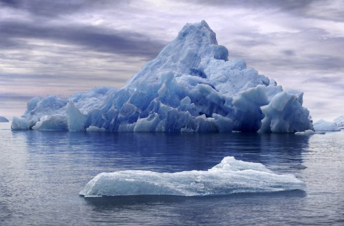 Continental Drift: From Sloths to Icebergs