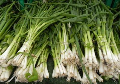 Green Onions at a Farmers Market in Chicago