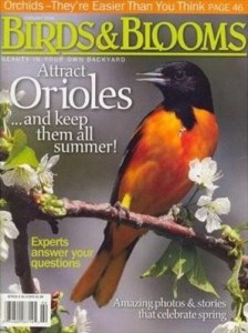 birds and bloom magazine cover with oriole