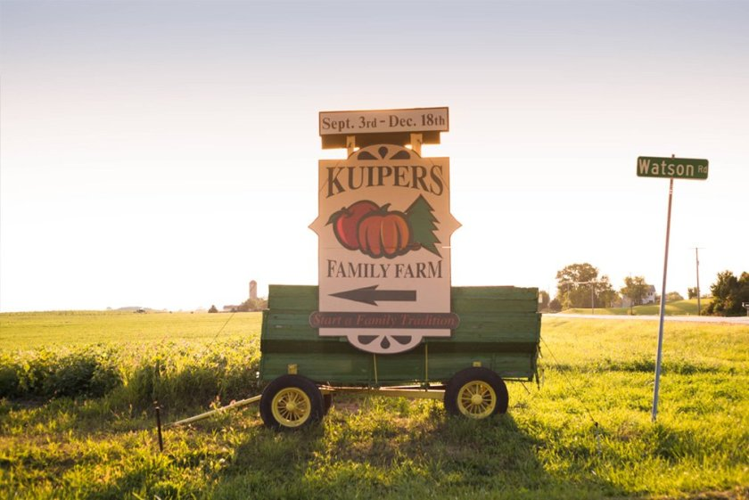 Pick apples at Kuipers Family Farm