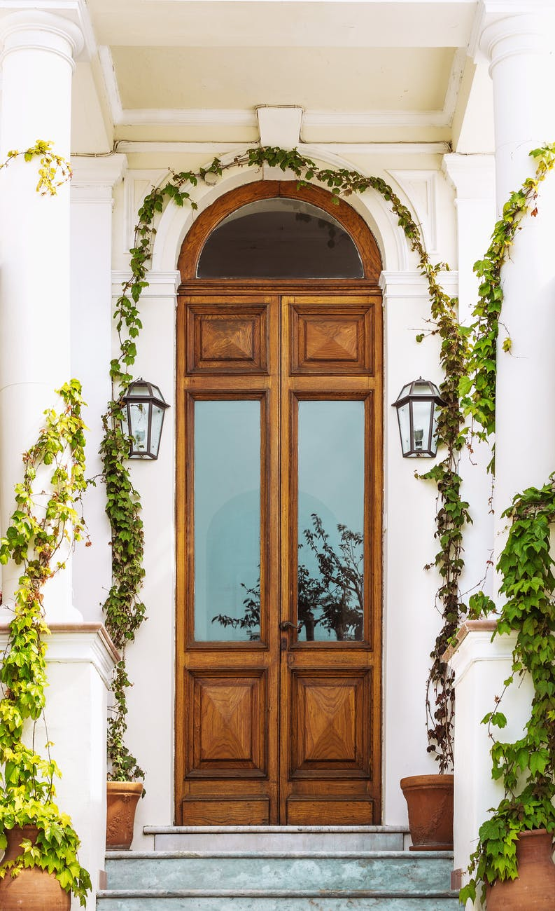 brown wooden door with green plants