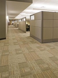 Encapsulation carpet cleaning | The clean scene blog
