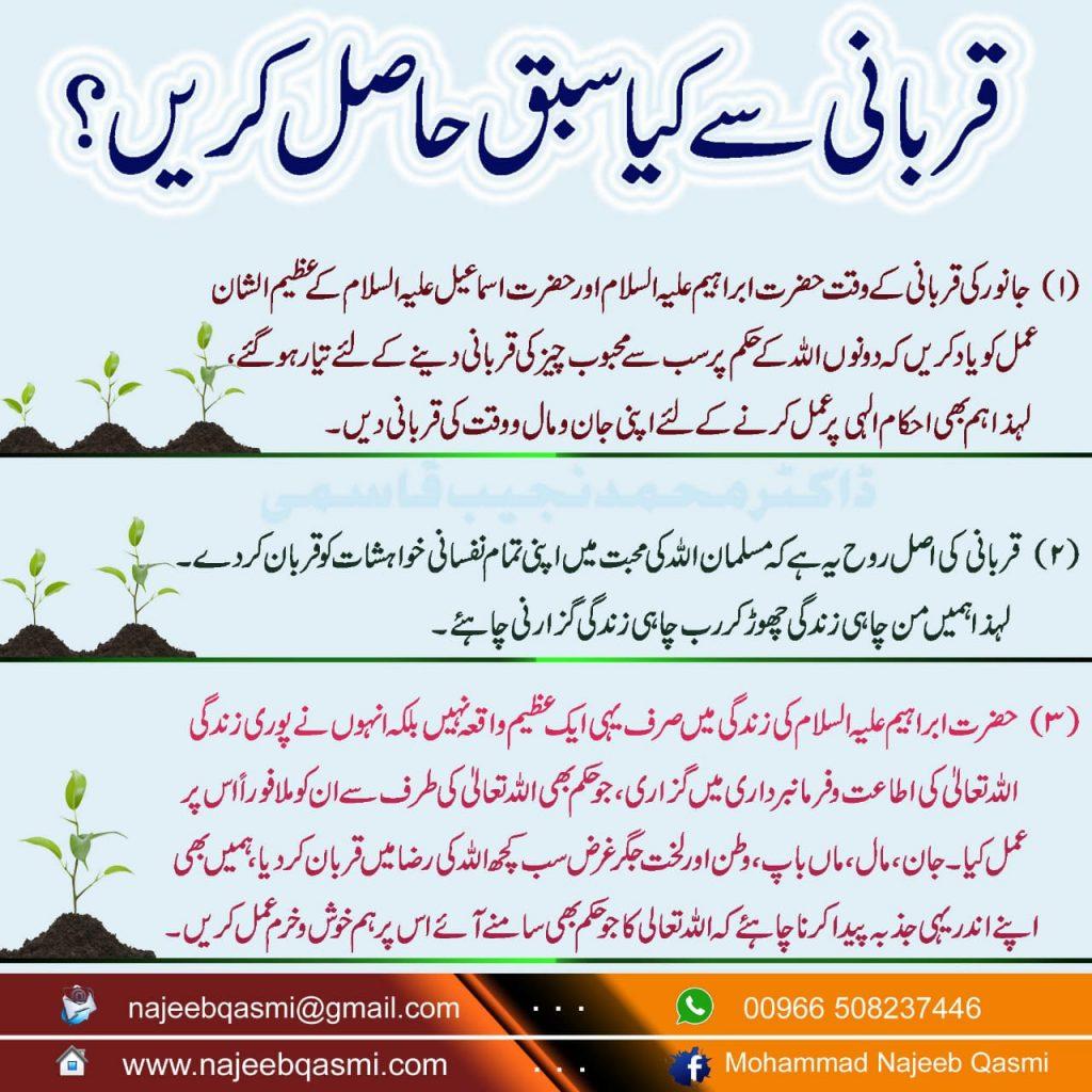 Qurbani se Kya Sabaq Hasil Karain? (Urdu)