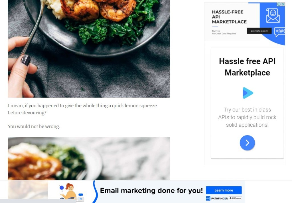 Pinch Of Yum makes money by displaying ads on their blog