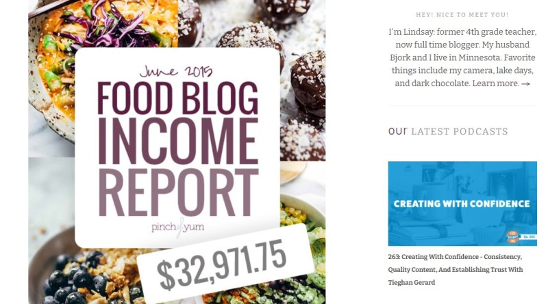 Pinch Of Yum made $32,971.75 in revenue from their blog in June 2015