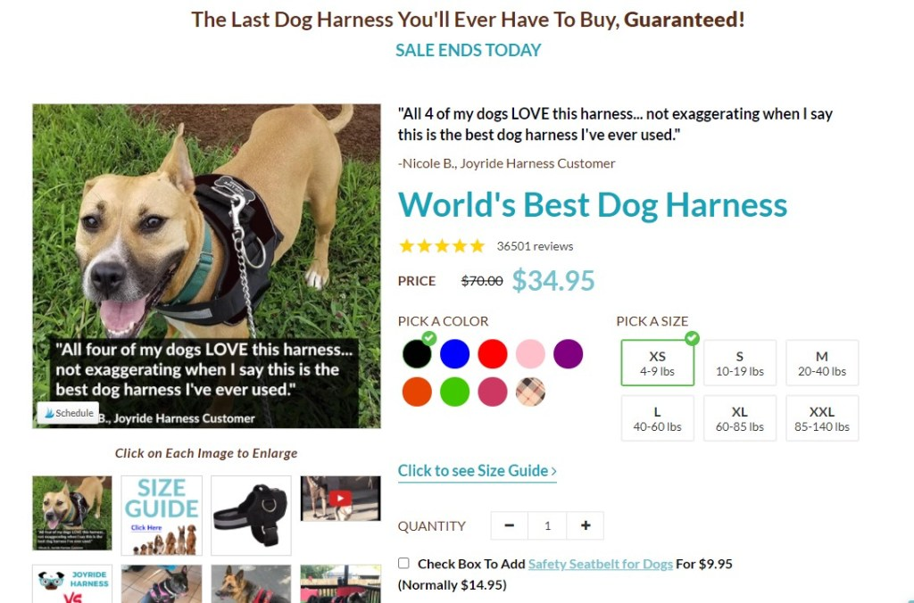 JoyRideHarness product page design
