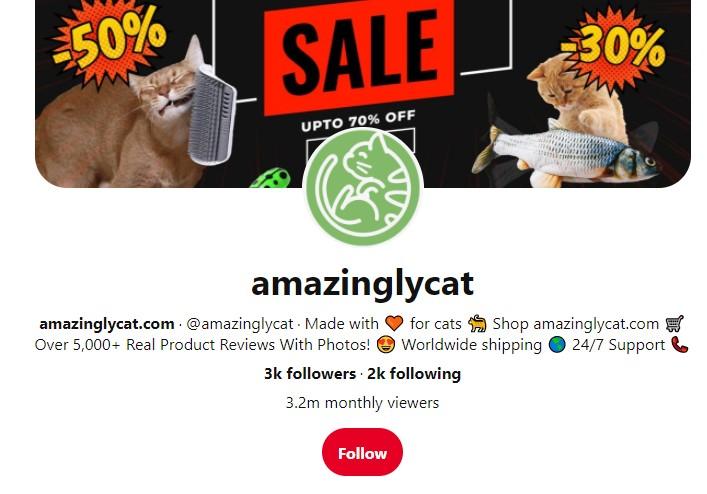 AmazinglyCat Pinterest profile