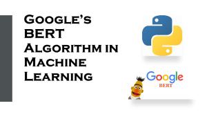 BERT in Machine Learning