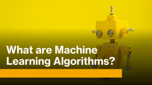 What are Machine Learning Algorithms?
