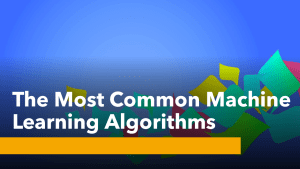 The Most Common Machine Learning Algorithms