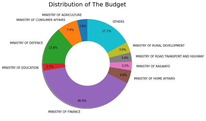 Financial Budget Analysis