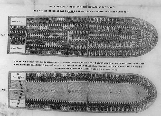 Slave Ships Illustration (1788)