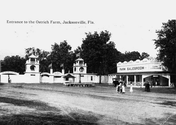Florida Ostrich Farm entrance