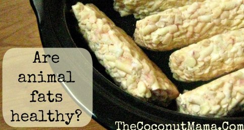 How to Render Animal Fat in a Crock Pot from The Coconut Mama