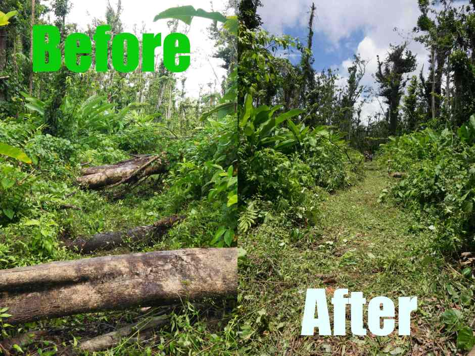 Restoring the Waitukubuli Trail in Dominica