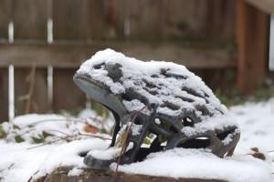 Winter in the garden - The Coeur d'Alene Coop