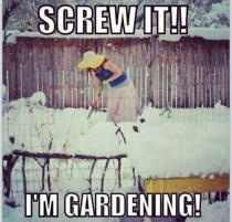 Gardening in the snow | The Coeur d'Alene Coop