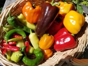 Heirloom Peppers | The Coeur d Alene Coop