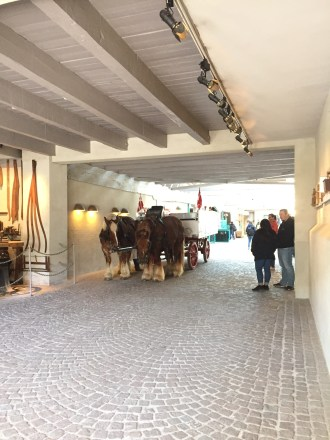 The horses from Carlsberg's stables