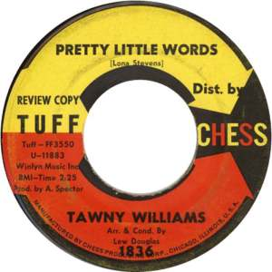 Tawny Williams ‎– Pretty Little Words