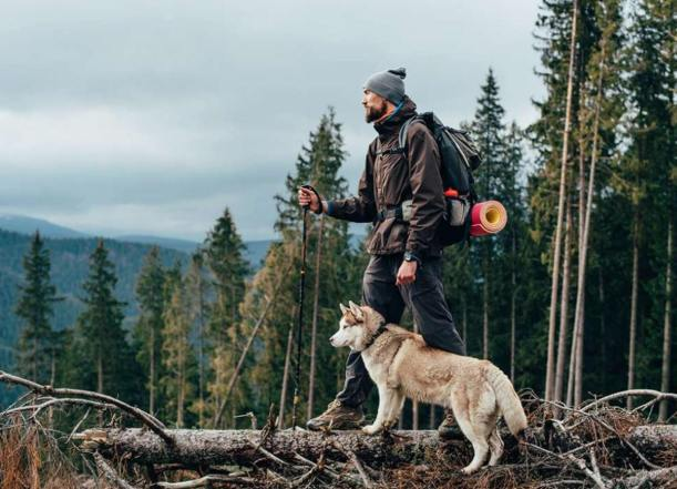Backpacking with dogs and traveling husky