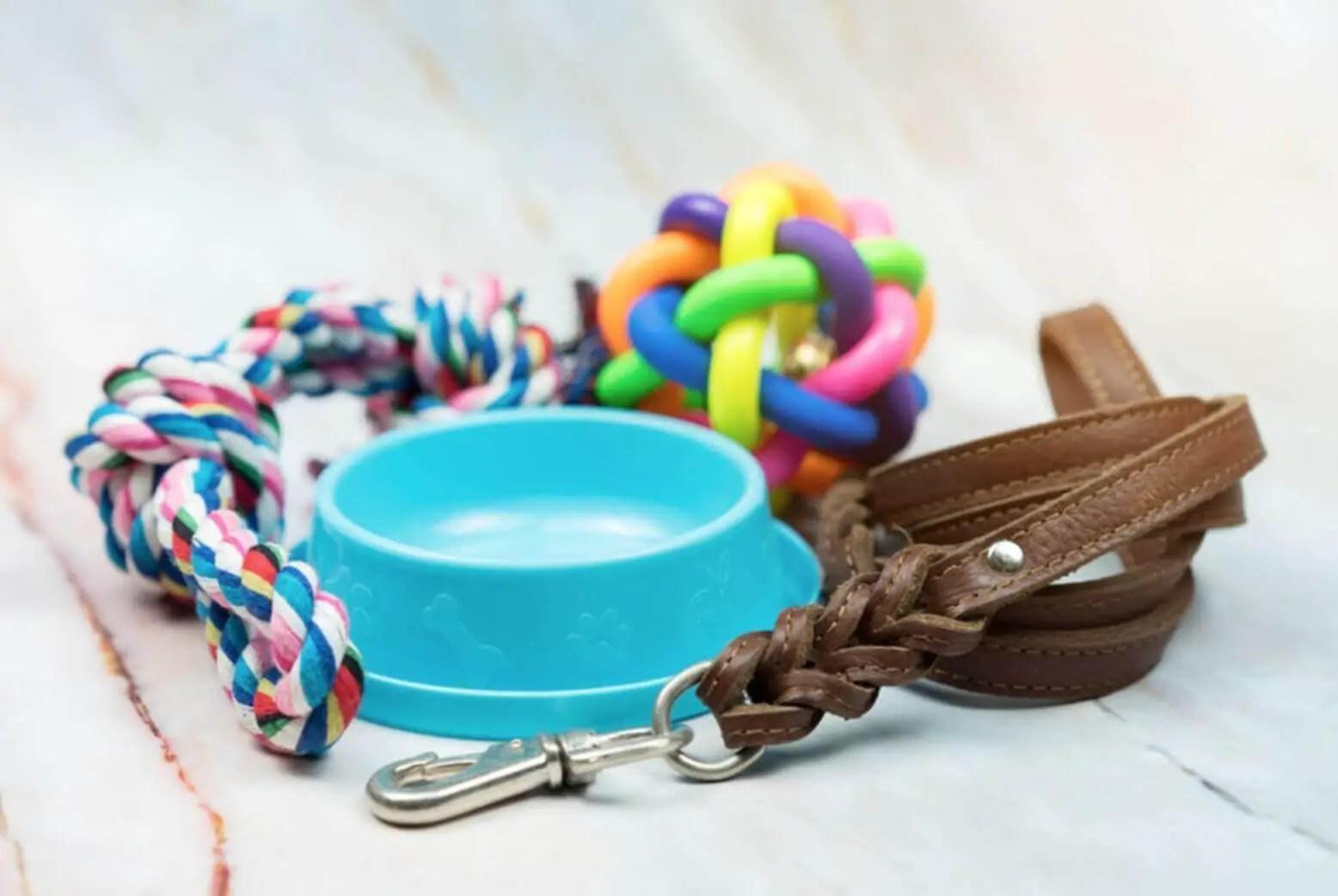 toys and leash oggetti addestramento cucciolo