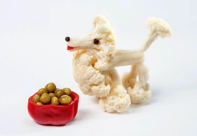 dog broccoli homemade vegan dog food diet