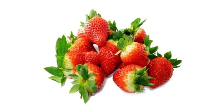 fragole ai cani - quale frutta possono mangiare i cani (9)