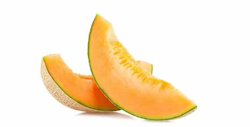 melone ai cani - frutta ai cani - quale frutta possono mangiare i cani (14)