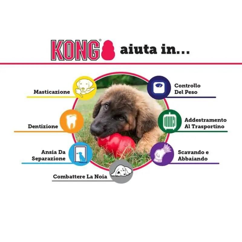 A cosa serve il Giocattolo per cani kong 2020