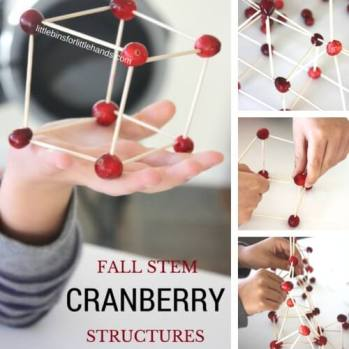 Cranberry-Structures-for-Fall-STEM-and-Thanksgiving-Engineering.jpg