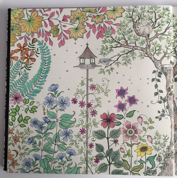 Pictures Colored In Secret Garden The Coloring Inn