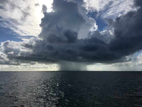 Distant storm clouds over the ocean's horizon represent the looming unknown of diagnosis