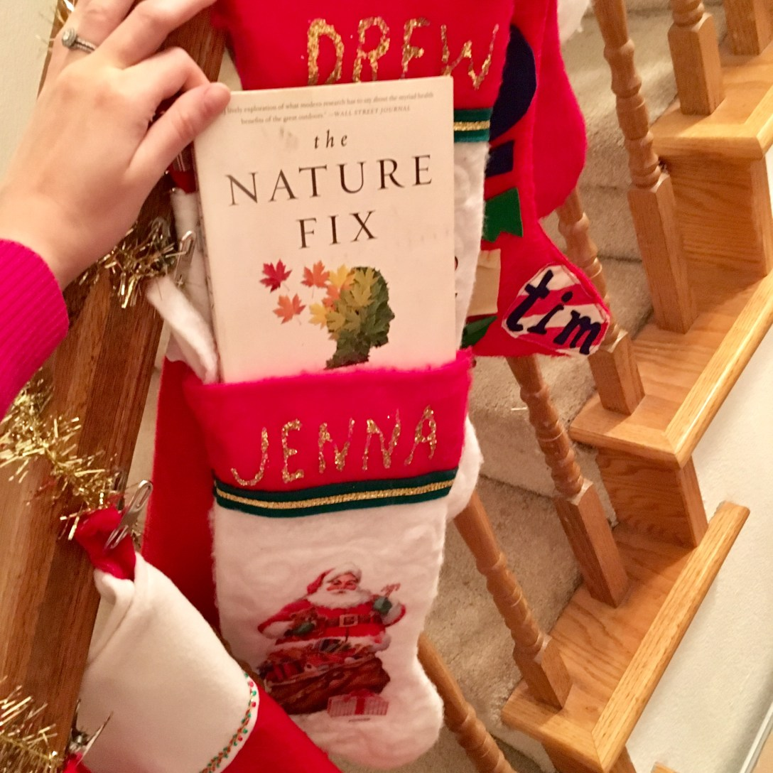 Hand lifting The Nature Fix paperback book out of a Christmas stocking