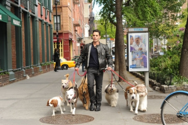 "Day job in primetime: Justin Silver goes ""Funny For Fido,"" hosts ""Dogs in the City"" on CBS"