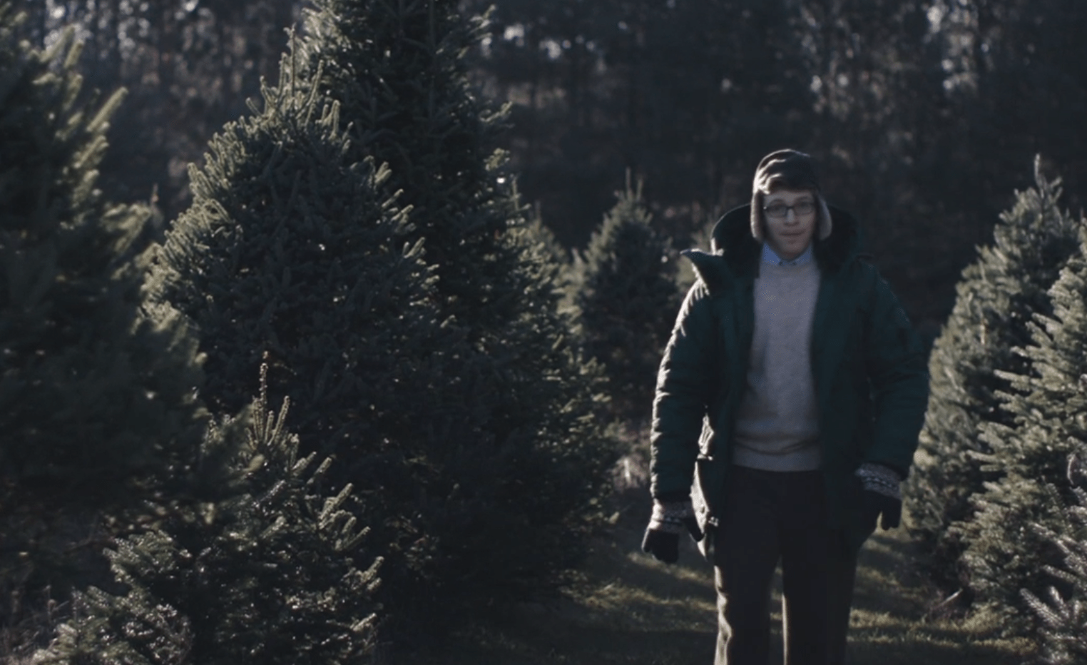 "Watch ""Joe Pera Helps You Find the Perfect Christmas Tree"" on ..."