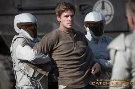 President Snow swat teams Panem one district at a time.