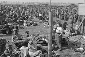 genocidio 2a
