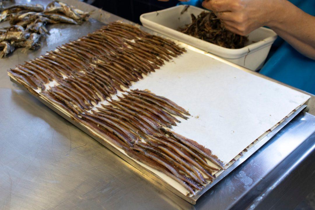 Visite anchoirie Collioure