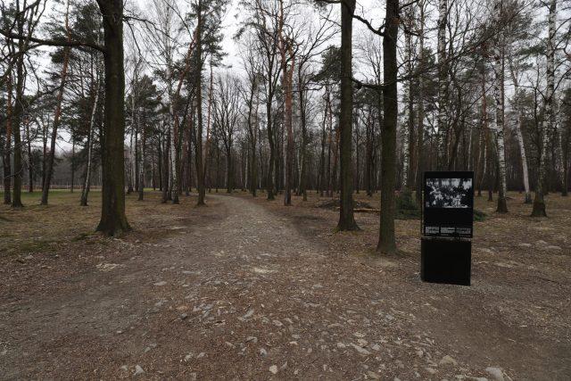 Visiter Auschwitz-Birkenau