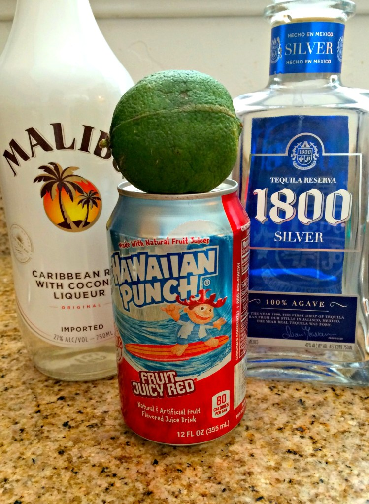 Ingredients for Tropical Mexican Punch ~ The Complete Savorist