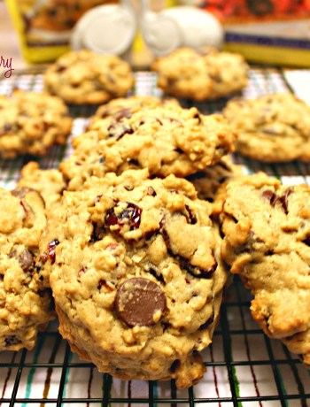 Oatmeal cookies baked using dark chocolate chips, dried cranberries, and SPLENDA®. ~ The Complete Savorist by Michelle De La Cerda