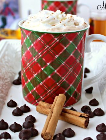Homemade Mexican hot chocolate made using three simple ingredients: milk, dark chocolate, and cinnamon; then topped with cinnamon whipped cream. ~ The Complete Savorist by Michelle De La Cerda