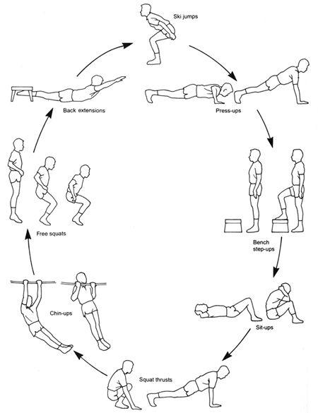 circuit training chart
