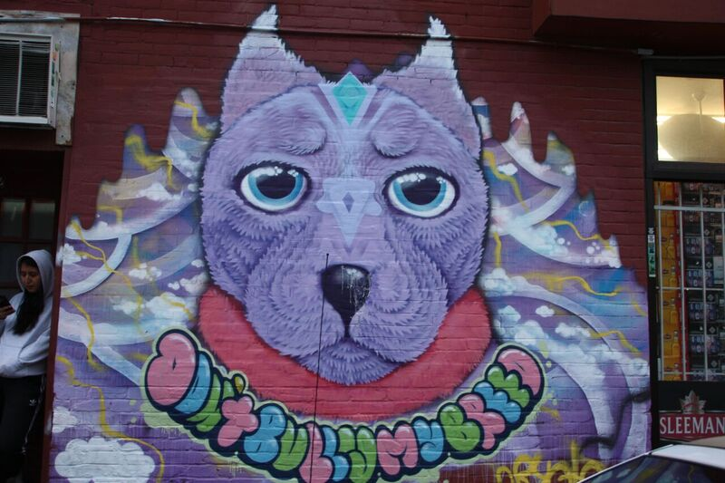 """Don't bully my breed"" pit bull mural in the Plateau by artist Cryote. Photo by Savanna Craig."