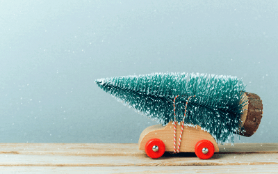 Free Christmas tree collection service