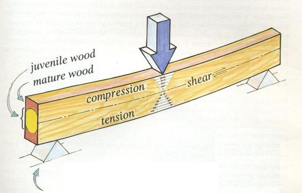 Bending-Test-on-Wooden-Beam