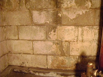 masonry-interior-grouting