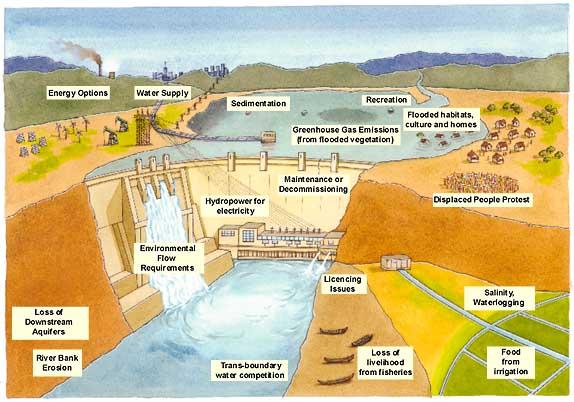 Environmental Impacts of Dams