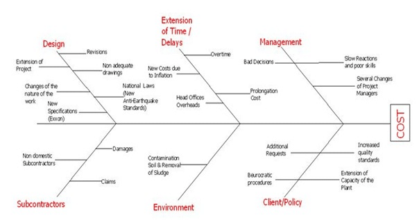 Cause and Effect Diagram - Fishbone Analysis of the COST